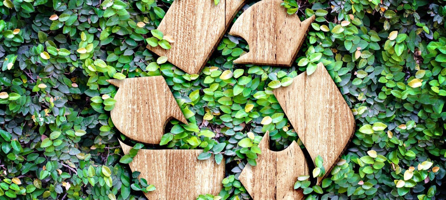 foto eco concept green wall