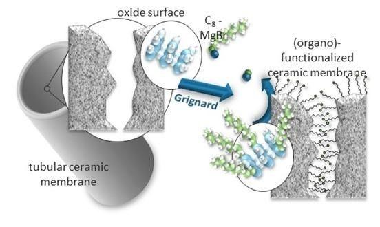 Grignard surface modification