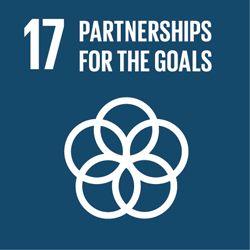VITO SDG 17