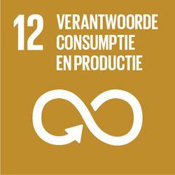 VITO SDG 12